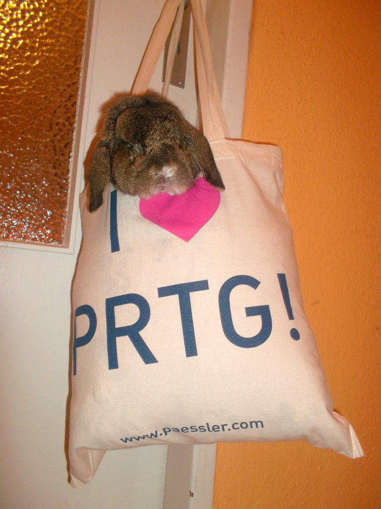Even the Easter Bunny is relying on PRTG – all eggs will be delivered in time. Happy & relaxed Easter holiday!